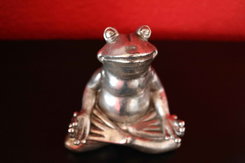 Yoga-Frosch, meditierender Frosch
