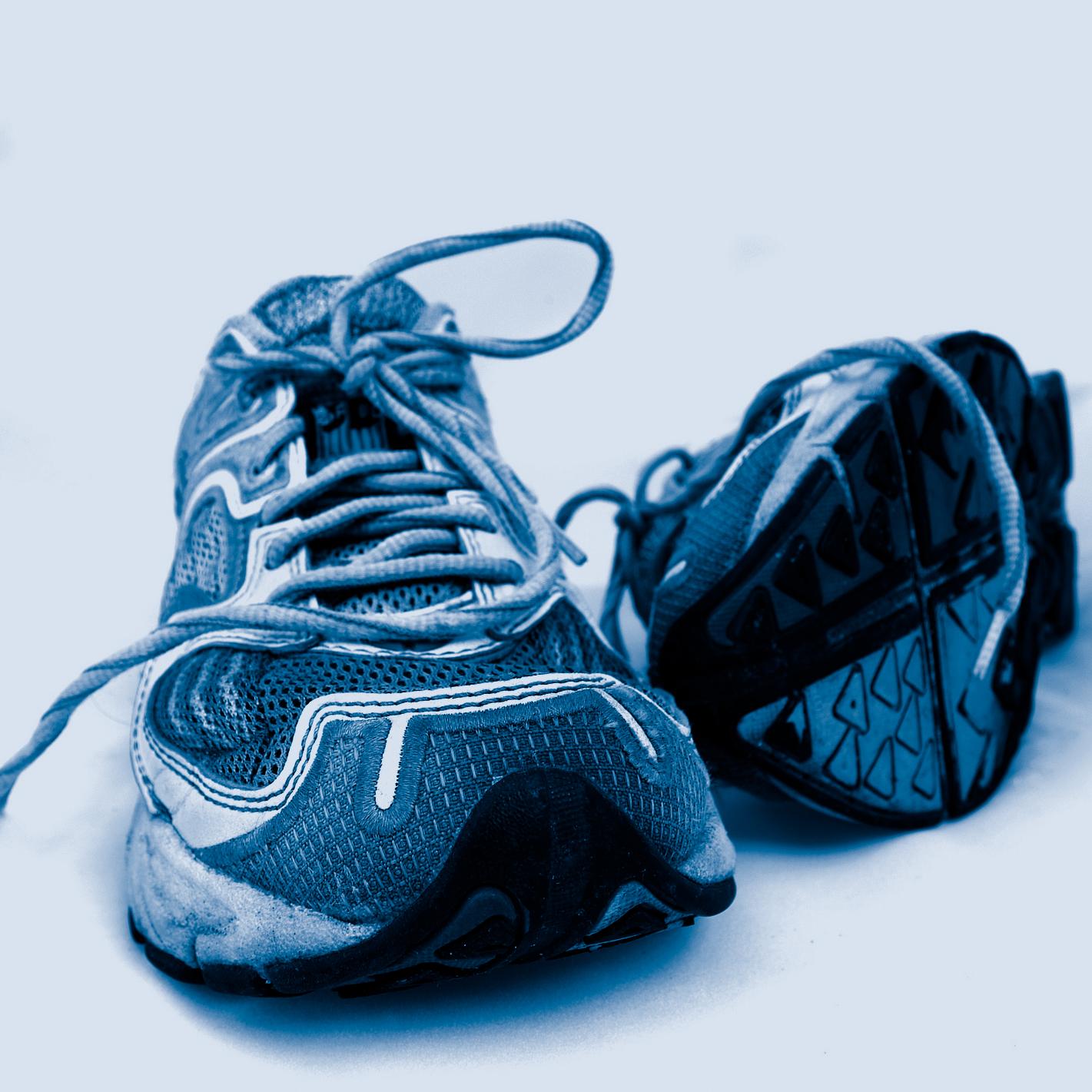 Fitness, Fitness-Angebot