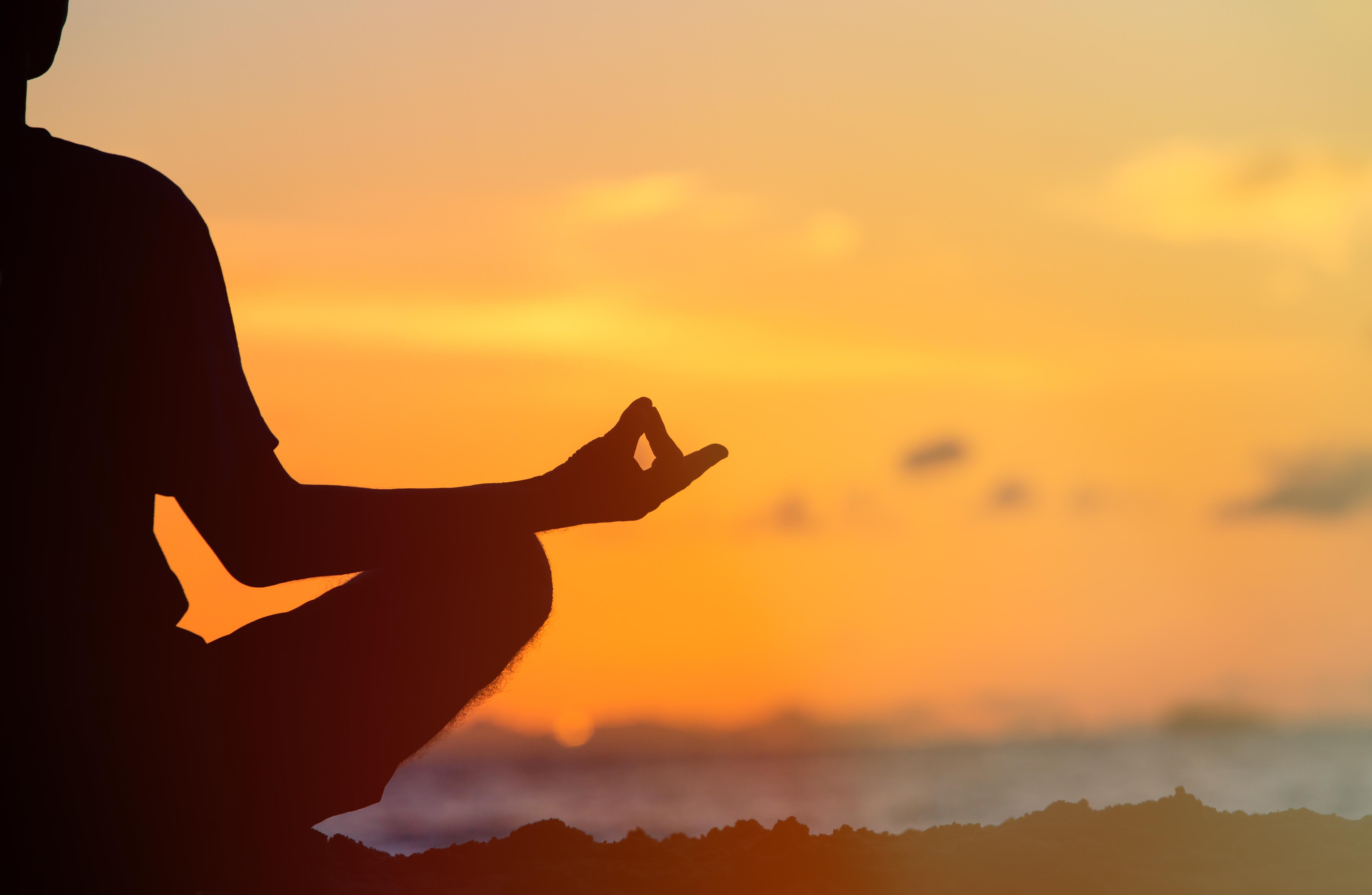 Mediterender im Sonnenuntergang