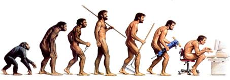 vom Affen zum Jäger und sammler zum Schreibtischmensch
